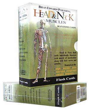 Sale Item Head And Neck Muscles Flash Cards